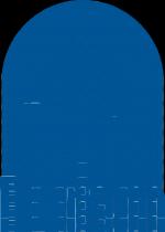 Pyram logo1com
